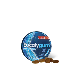 EUCALYGUM SUGAR FREE PASTILLES A SUCER